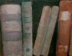 Stonebrook Publishing, Nancy L. Baumann